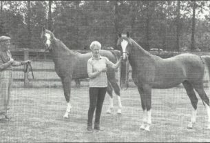 Joe and Sue Norman with Kasadi foals (l) Gavin (R) Marceline