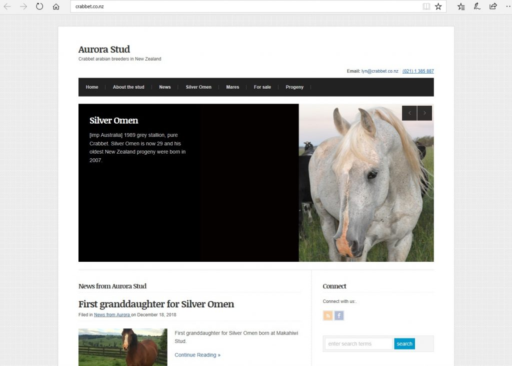 Aurora Stud (NZ). Breeding Pure Crabbet & high percentage Crabbet Arabians.