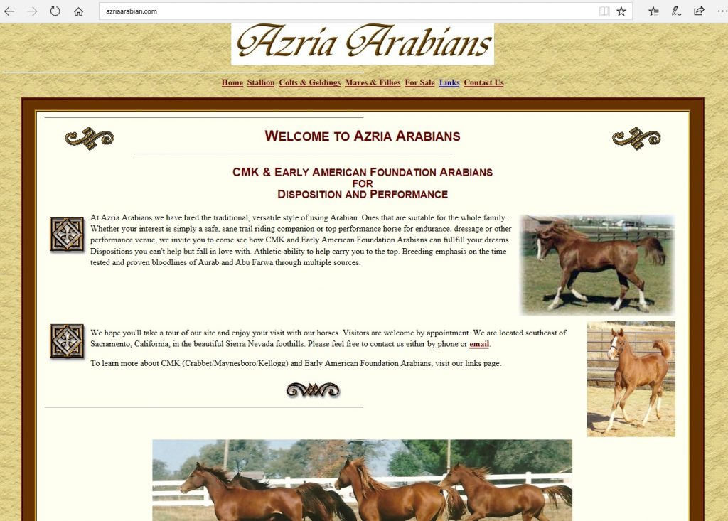 Azria Arabians. Breeding the beautiful athlete from CMK and Early American Arabian bloodlines, with a focus on Aurab and Abu Farwa through multiple sources.