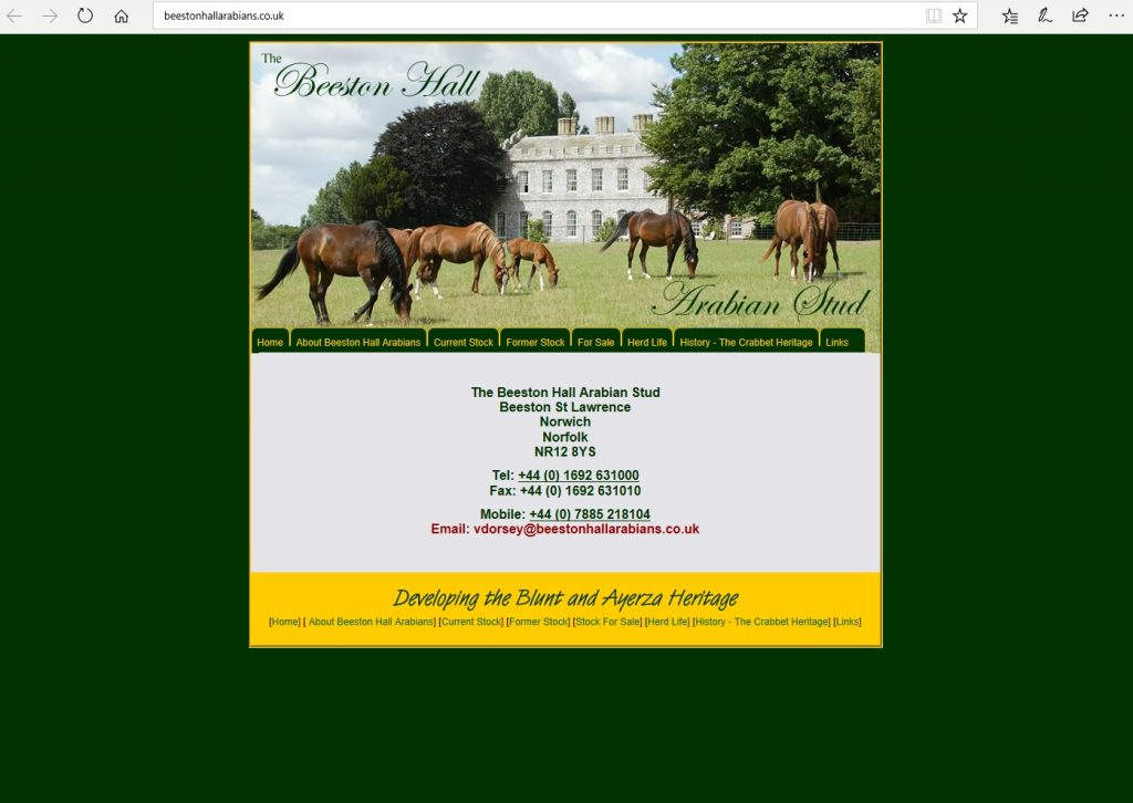 Beeston Hall Arabians (UK). Breeding Blunt and Ayerza bloodlines for the versatile, athletic Arabian horse.