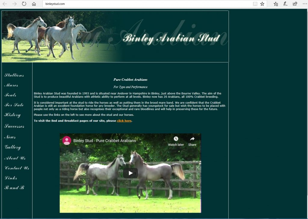 Binley Arabian Stud (UK). Breeding Pure Crabbet Arabians for beautiful performance horses.