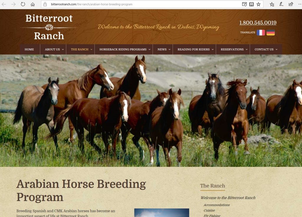 Bitterroot Ranch. Breeding working Arabians on their Wyoming ranch, utilizing CMK & Spanish bloodlines.