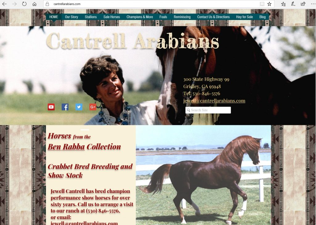 Cantrell Arabians. Over 60 years of breeding champions from high percentage Crabbet & CMK stock. Former home of the legendary Ben Rabba.