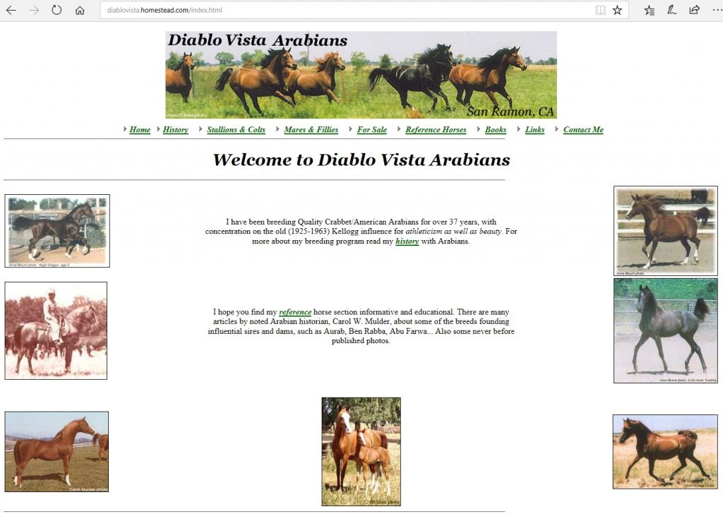 Diablo Vista Arabians. Breeding Crabbet-related and CMK Arabians for over 37 years, focusing on old Kellogg bloodlines for athleticism as well as beauty.