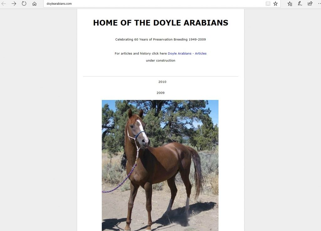 Doyle Arabians. Breeding Pure Crabbet Arabians from early Blunt imports, or 'Blunt' Arabians.