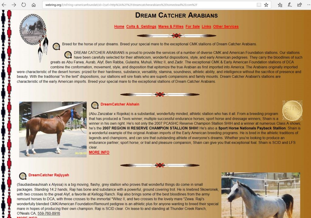 Dreamcatcher Arabians. Breeding CMK and Early American Arabian bloodlines for the all-around athlete.