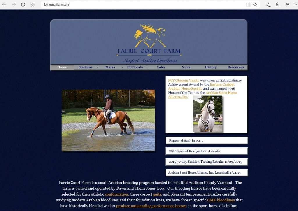 Faerie Court Farm. Breeding beautiful Arabian performance horses for the sport horse disciplines from carefully selected CMK bloodlines.