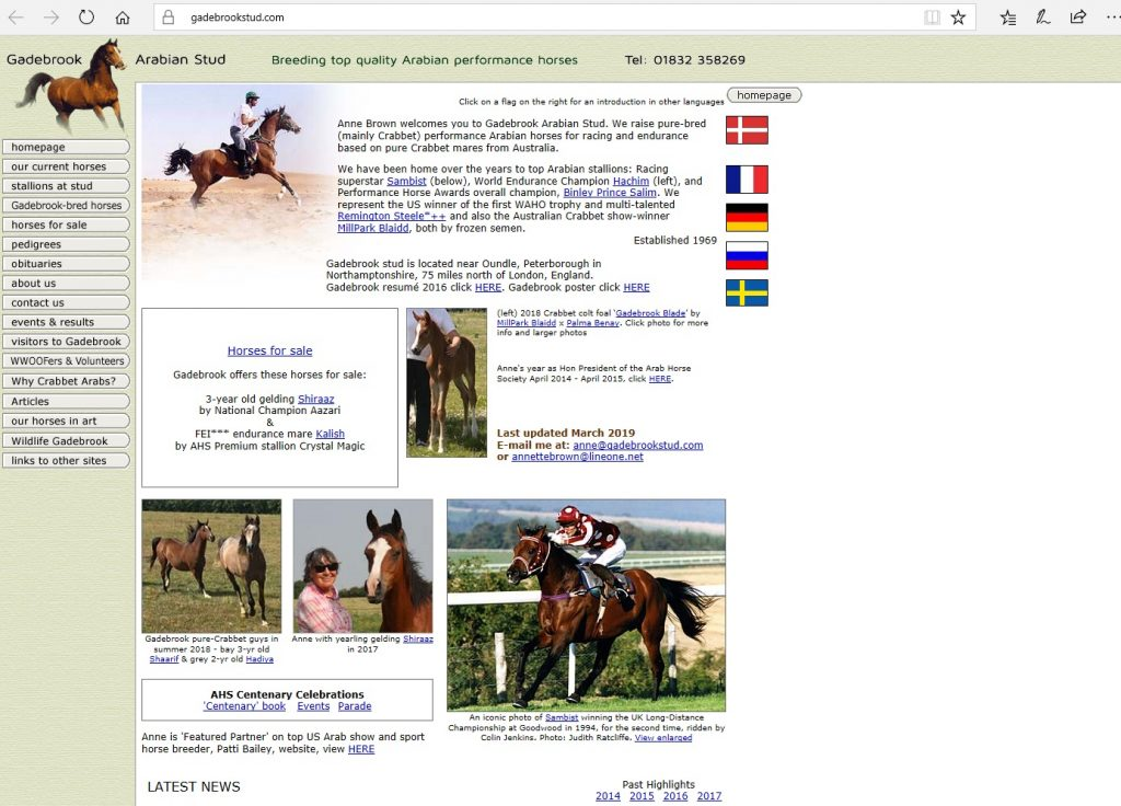 Gadebrook Stud (UK). Breeding Pure Crabbet & high-percentage Crabbet Arabians performance horses.