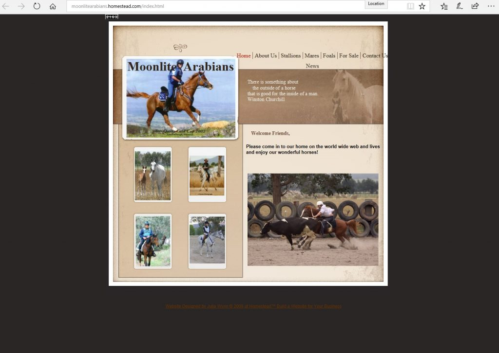 Moonlite Arabians (AU). Breeding Pure Crabbet & high percentage Crabbet Arabians for performance disciplines.