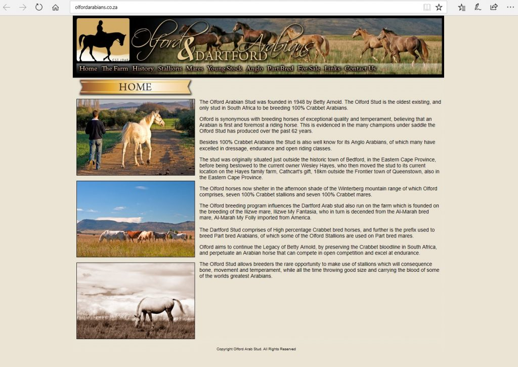 Olford Arabians (ZA). South African stud founded 1948 by Betty Arnold, breeding Pure Crabbet Arabians.
