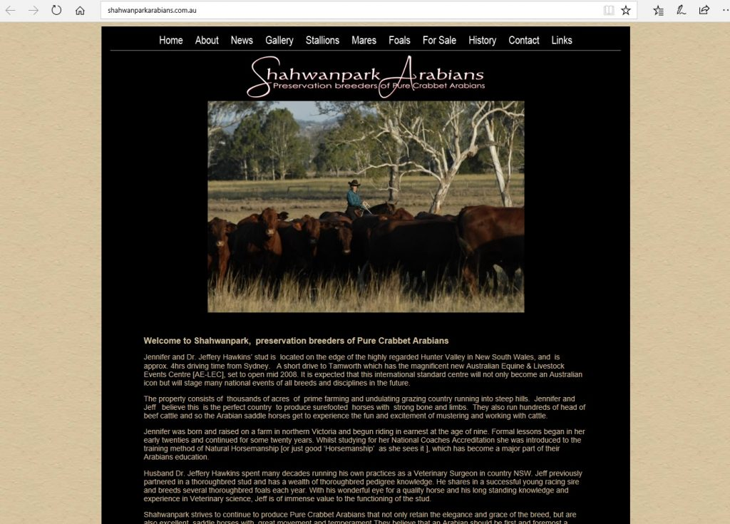 Shahwanpark Arabians (AU). Breeding Pure Crabbet Arabians for use as beautiful saddle horses.