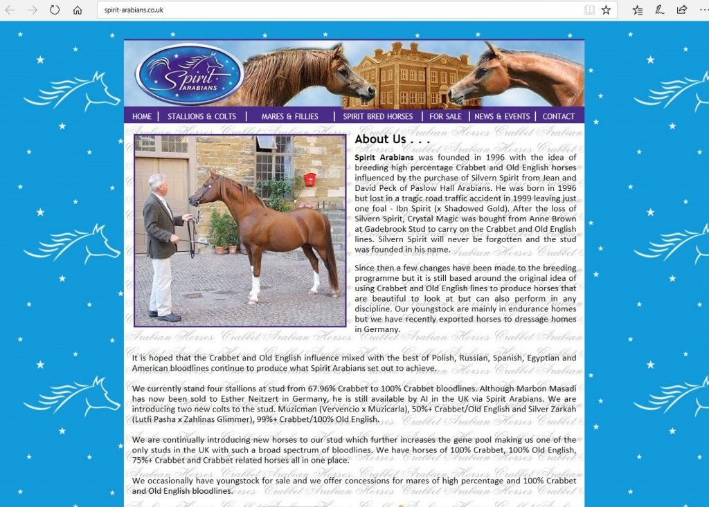 Spirit Arabians (UK). Breeding Pure Crabbet and high-percentage Crabbet and Old English bloodlines.