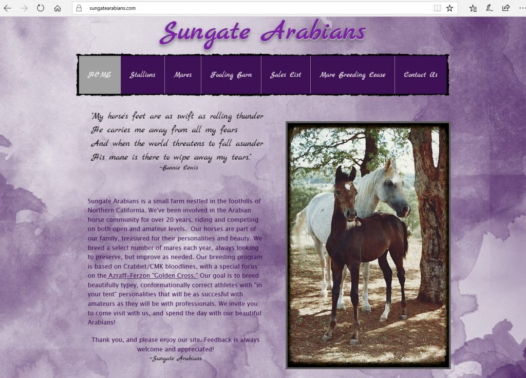 Sungate Arabians. Breeding high percentage Crabbet & CMK Arabians, utilizing Azraff/Ferzon bloodlines.