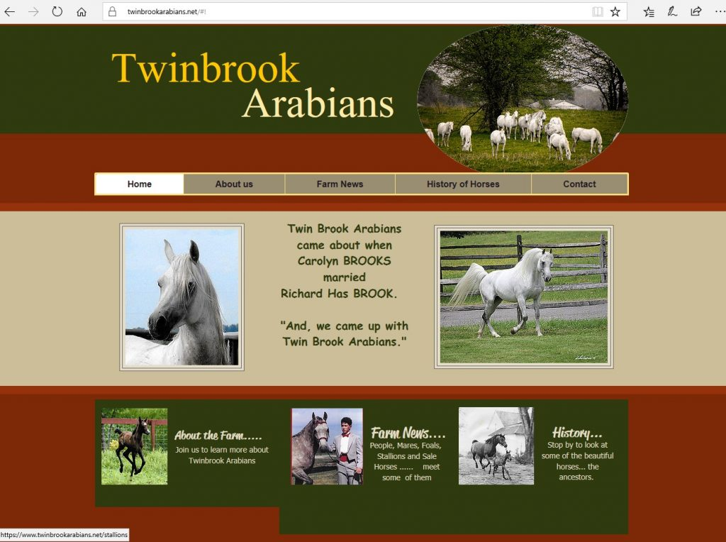 Twinbrook Arabians. Breeding high percentage Crabbet & CMK Arabians, focusing on Azraff/Ferzon bloodlines.