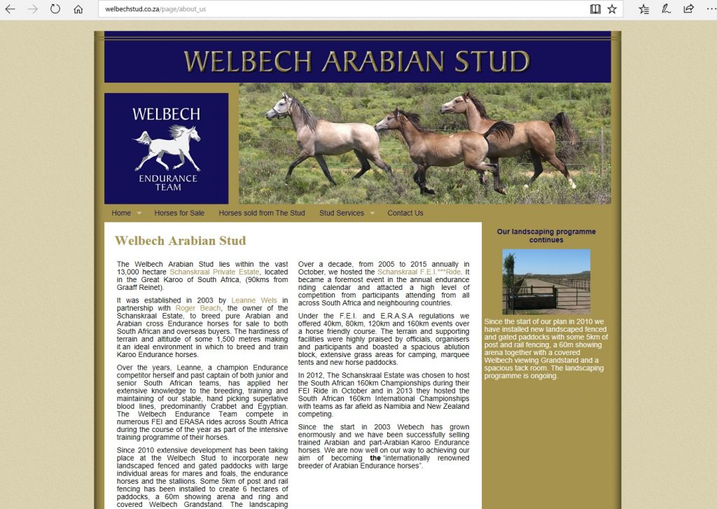 Welbech Arabian Stud (ZA). Breeding for endurance, standing the Pure Crabbet stallion, Binley Indian Prince.