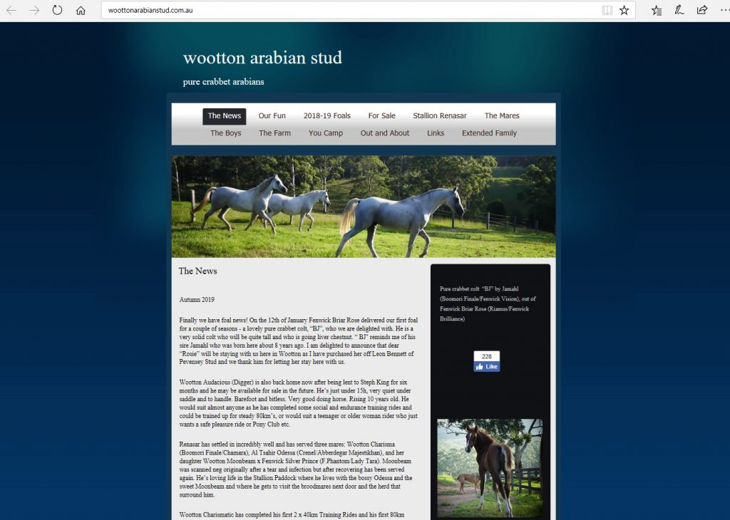 Wootton Arabian Stud (AU). Breeding Pure Crabbet Arabians.