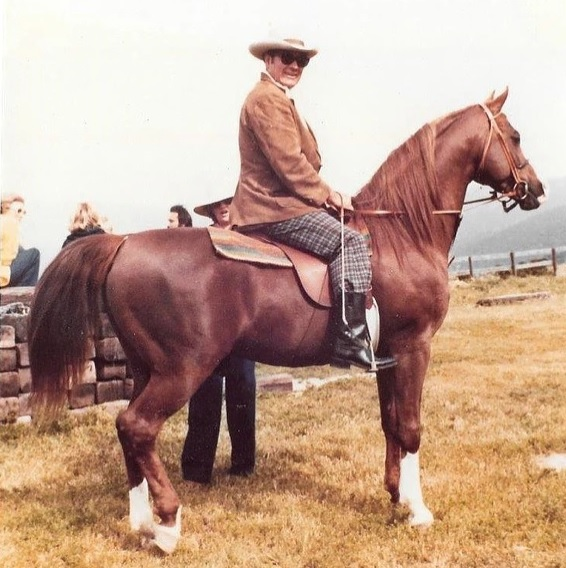 Ed Hubbert riding Ben Rabba, photo sent to Jewell by Beatrice Paine.